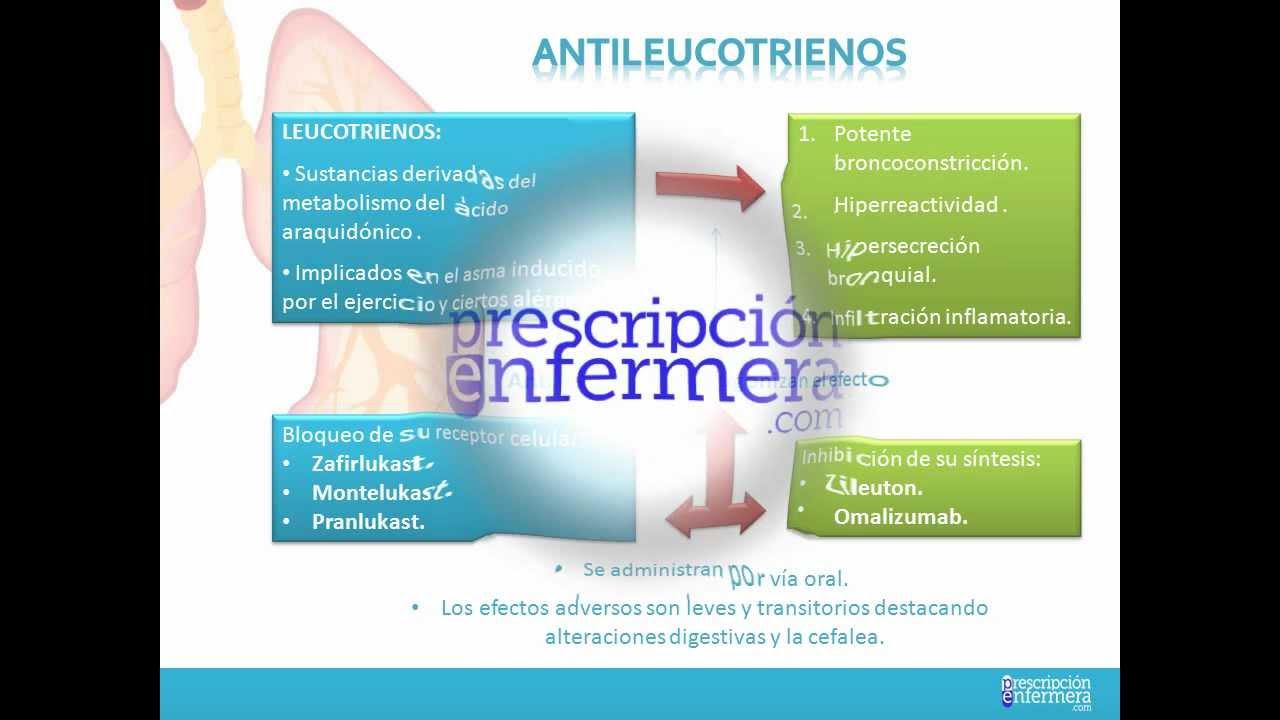 Aminofilina dosis para adelgazar