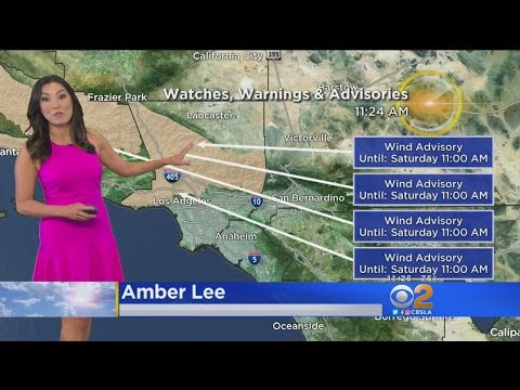 Amber Lee's Weather Forecast (May 12)