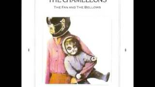 Watch Chameleons The Fan And The Bellows video