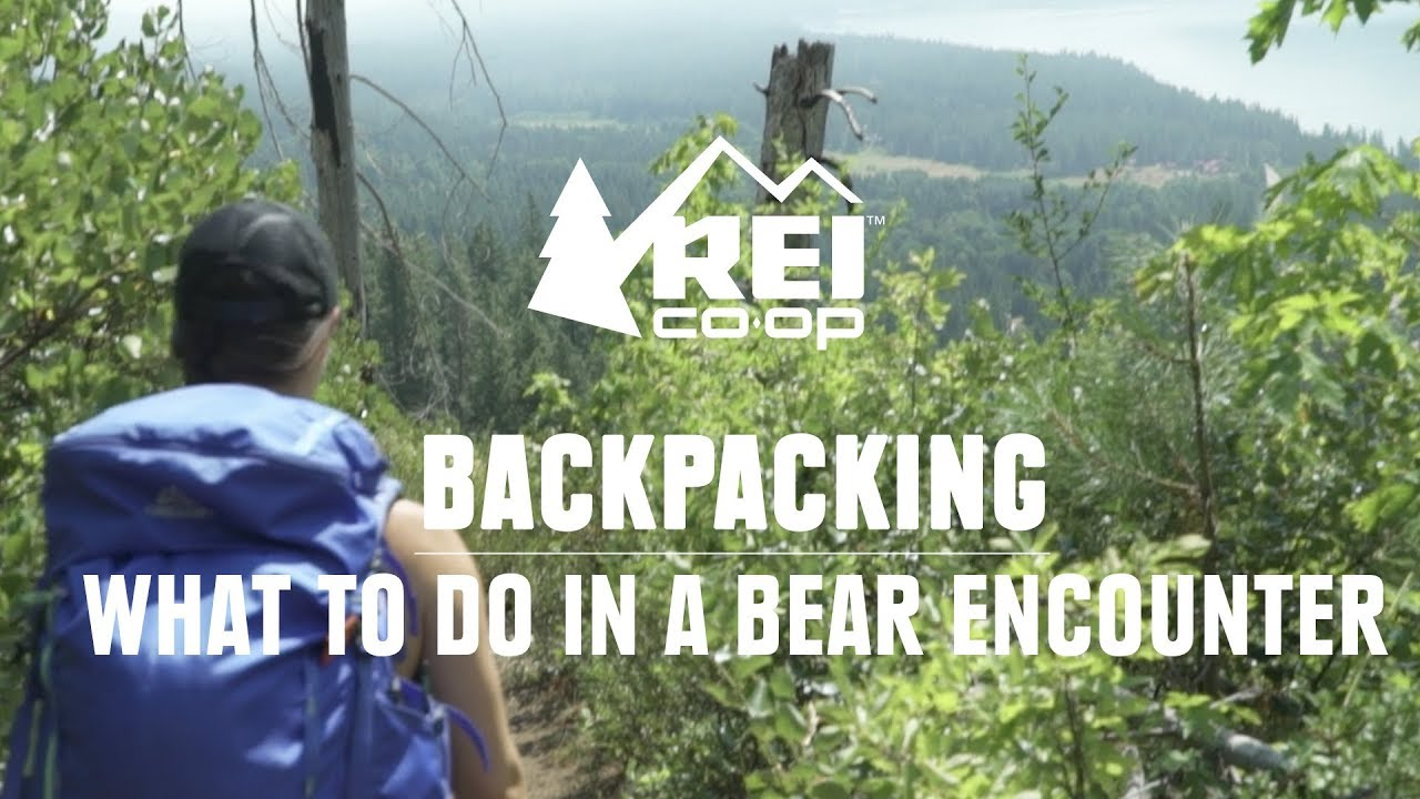 6801fbeb Backpacking & Camping in Bear Country | REI Expert Advice