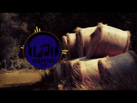 John Deley and the 41 Players - Bark [Reggae] Loop