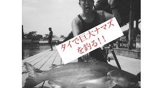 タイに生息する謎の巨大ナマズを釣るため、世界中から釣り人が訪れるbun...