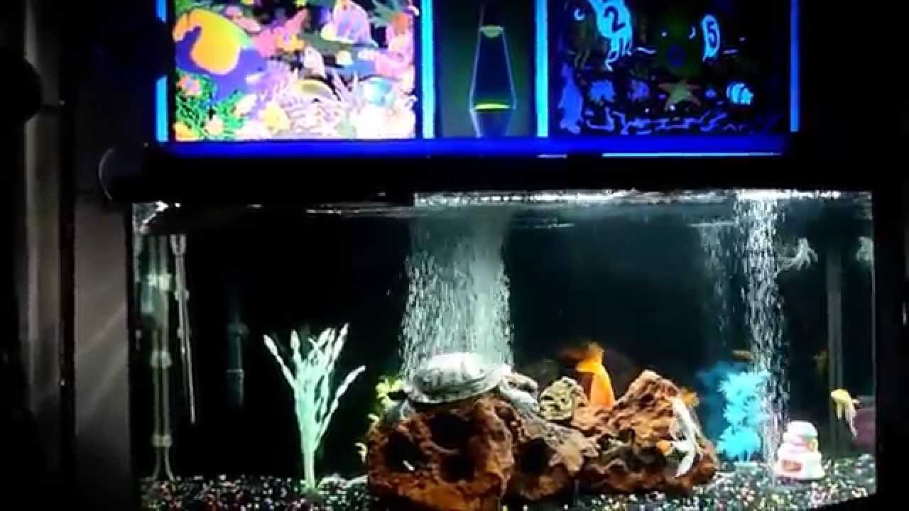 Glow in the dark fish tank youtube for Glow in the dark fish tank