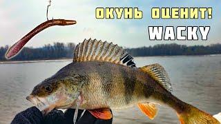 Ловля Весеннего Окуня на Оснастку Wacky отводной поводок проводка анимация приманки Рыбалка Апрель