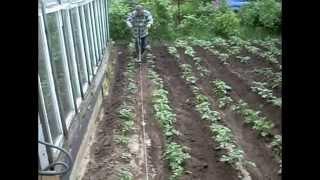 Окучивание картофеля с электролебедкой HD