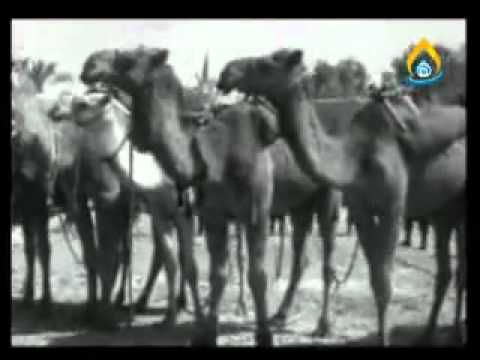 history of imam hussain zaerin and shrine 1.flv
