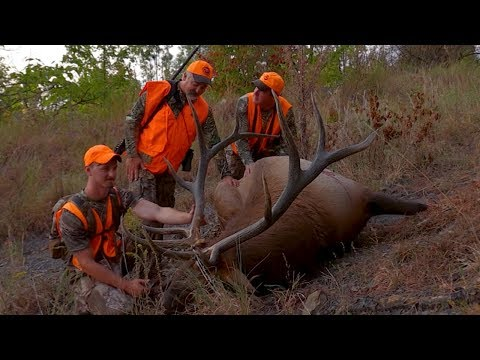 Hunting Eastern Kentucky For A Big Bull Elk