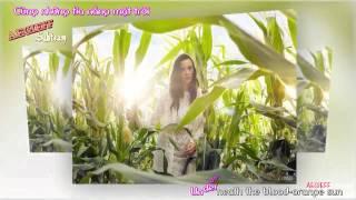 [AEGIEFF Subteam][Vietsub+Karaoke] Katy Perry - Legendary Lovers