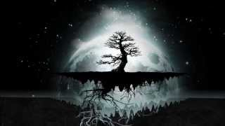 Shpongle - ...and the Day Turned to Night