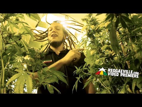 Ser Rasta - Autocultivo [Official Video 2017]