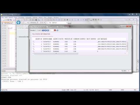 Automated Execution And Monitoring Of Temenos T24 COB