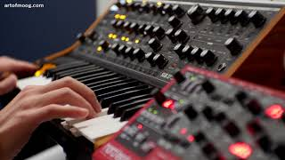 Art of Moog - 21st Century Hyper-Bach on Synthesizers