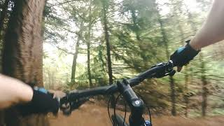 Mountain biking in a flat country. Episode 2 : Netherlands,  Beetsterzwaag