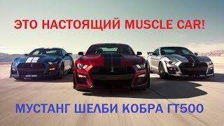 это Кобра! В 500 лошадей! Новый Mustang Shelby GT500 обзор, комплектации, цена