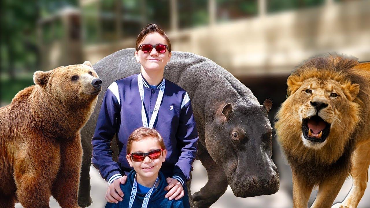 VLOG - AU MILIEU DES LIONS, OURS & HIPPOPOTAMES EN CAMION BROUSSE ! - ZooSafari de Thoiry