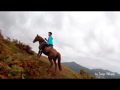 FREE RIDE!. OFF ROAD HORSEBACK ADVENTURES IN BASQUE COUNTRY. ASTAK PRO3 7500