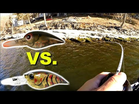Winter Fishing: Which works better?? New Crankbait vs. Wiggle Wart