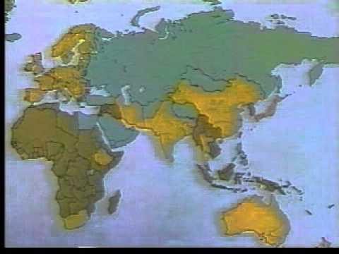 Imperialismo y colonialismo en el siglo XIX