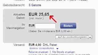 Wie funktioniert ebay
