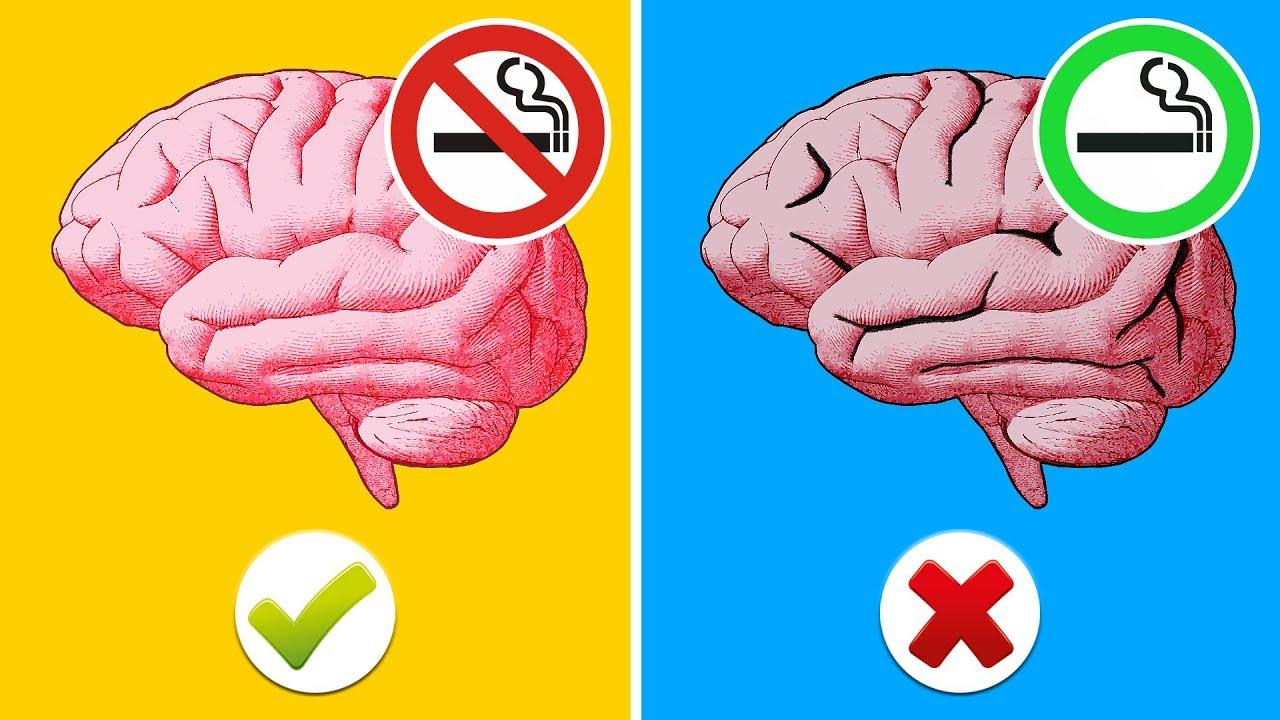 Gehirnfunktion und Gewichtsverlust