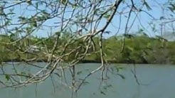 BREEZE LAKE RV CAMPGROUND Brownsville Texas