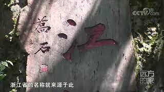 [远方的家]行走青山绿水间 水润山青钱江源| CCTV中文国际