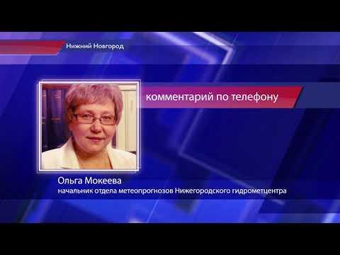 Капризы погоды: в Нижнем Новгороде ожидаются заморозки