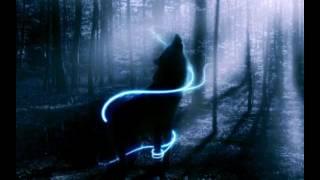Волки обои