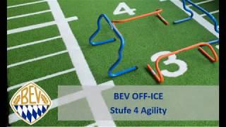 BEV Info Stufe 4