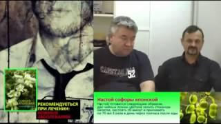 Софора японская применение на www.травами-лечение.рф