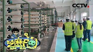 《芝麻开门》 20190706 挑战大现场 探秘核电(4)|CCTV少儿