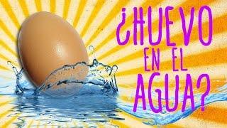 Qué ocurre cuando abres un huevo debajo del agua