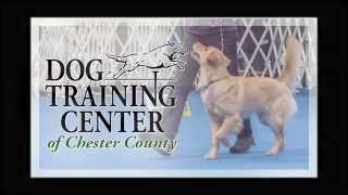 Dog Training Center Of Chester County-general Information