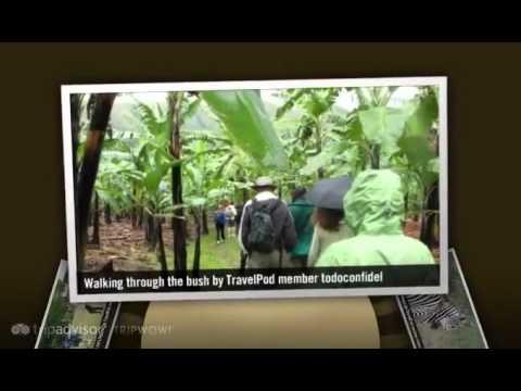 """Interesting facts about Uganda"" Todoconfidel's photos around Mbarara, Uganda (facts on uganda)"