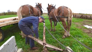 Fixing a Horse Drąwn Scoot // Spreading Manure with the Belgians
