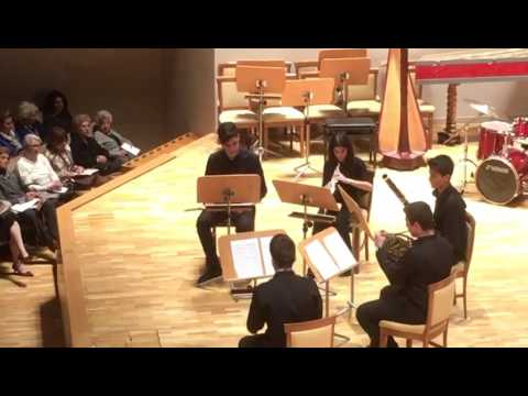 Reicha: Wind Quintet, op.88 no.2 / Project Talent 2017 of Madrid Symphony Orchestra Wind Quintet