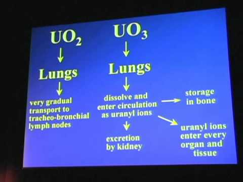 Dr. Thomas Fasy -  Depleted Uranium Weapons
