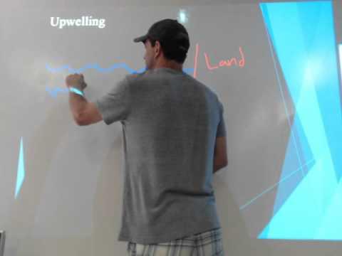 Marine Bio Video Lecture 1