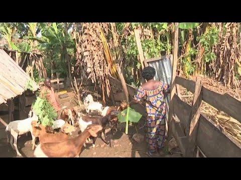 Togo, Défis de la reprise d'une activité après la retraite
