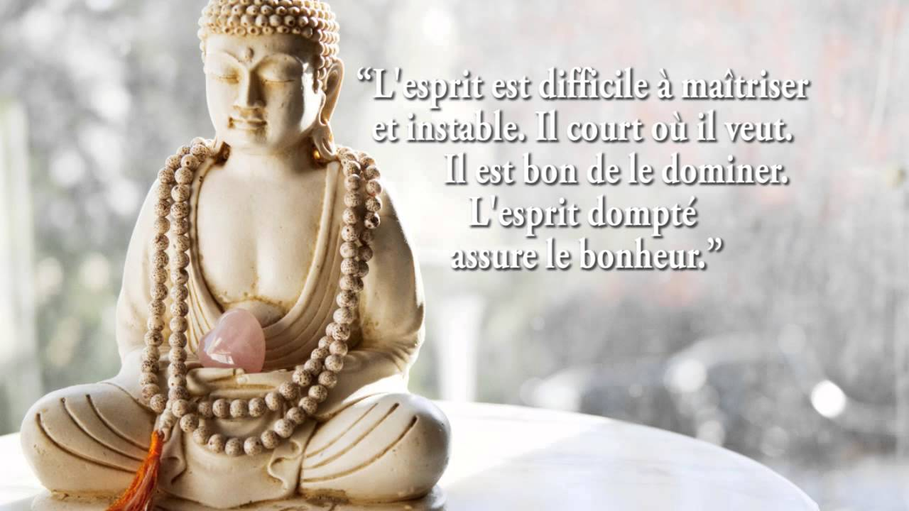 Gut gemocht Citations de Bouddha - YouTube PI24