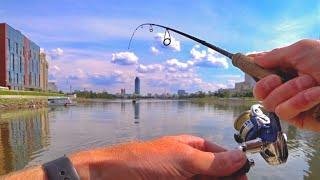 Вот где полно рыбы Окуни Судаки Щуки Рыбалка на Спиннинг в июле возле Дома