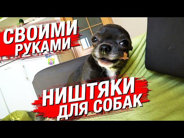 Делаю ништяки для собак из мослов. Начало карантина