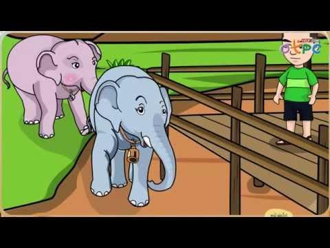 ใบโบก ใบบัว - สื่อการเรียนการสอน ภาษาไทย ป.1