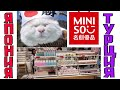 Японский магазин в Турции\  GBQ blog
