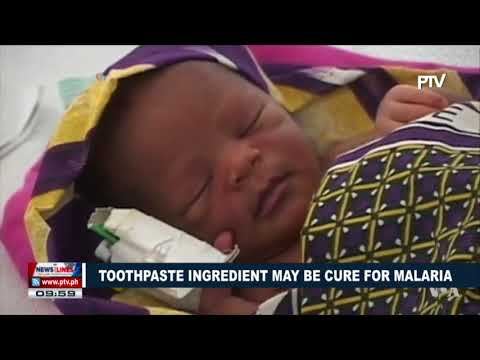 GLOBAL NEWS: Toothpaste ingredient may be cure for Malaria
