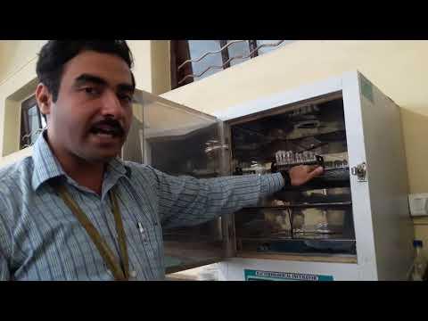 Video On Incubator