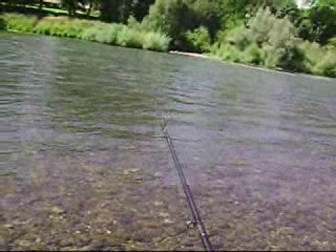 Fishing Matson Park On The Rogue River