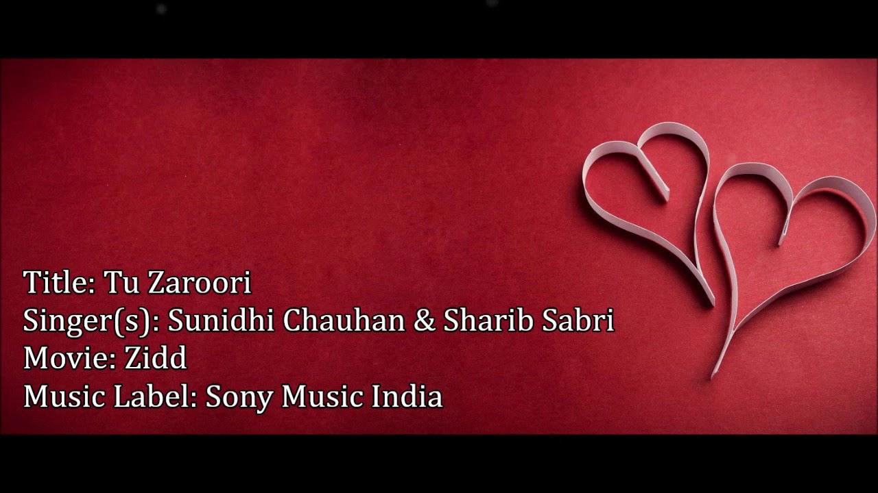 Download Tu Zaroori Lyrics | Yasir Ahmed