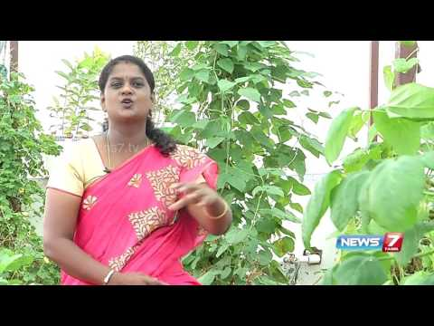 Tips to setup perfect kitchen garden in your home | Poovali | News7 Tamil