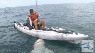 Shocking Shark Catch - Huge Bull Shark caught from Kayak - Biggest Shark Ever ft. BlacktipH